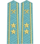 Shoulder straps ж/д вышитое поле  старшие 2 звезды