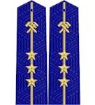 Shoulder straps ж/д вышитое поле пришивные младшие 3 звезды
