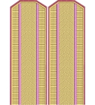 Shoulder straps казаков лентоткацкие на рубашку старшие