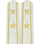 Shoulder straps ж/д вышитое поле  старшие 1 звезда
