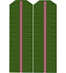 Shoulder straps ДПС вышитые младший офицерский состав