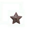 Звезда полевая 13 мм